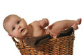 Newborn baby crawling out of the basket Royalty Free Stock Images