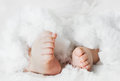 Newborn baby feet Royalty Free Stock Photo