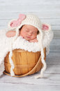 Newborn Baby Girl in a Basket Wearing a Lamb Hat Royalty Free Stock Photo