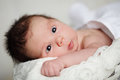 Newborn baby girl new life beautiful portrait Stock Photography