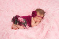 Newborn baby girl wearing a crocheted romper sleeping maroon headband and she is sleeping on her stomach on pink rose ribbon Stock Photography