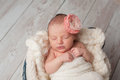 Newborn Baby Girl Wearing a Flower Headband Royalty Free Stock Photo