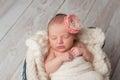 Newborn Baby Girl Wearing a Flower Headband