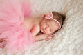 Newborn baby girl wearing a pink crocheted headband and tutu she is sleeping on white billowy fabric Stock Image