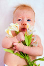 Newborn baby holding flowers Stock Images