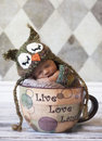 Newborn baby with owl hat in giant cup Royalty Free Stock Photo