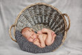 Newborn baby in a round wicker basket Royalty Free Stock Photo