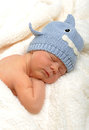 Newborn baby in shark hat sleeping Stock Image