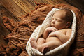 Newborn baby sleep sleeping new born kid on brown cloth Royalty Free Stock Photography