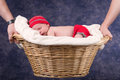 Newborn baby sleeping in basket held by parents. Royalty Free Stock Photo