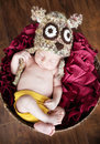 Newborn baby sleeping basket wearing owl hat Royalty Free Stock Image