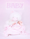 Newborn baby with teddy bear in the bed cute pink bedroom for girl text space happy and healthy lifestyle innocence concept Stock Photos