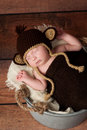 Newborn baby wearing a monkey hat crocheted and sleeping in galvanized bucket shot in the studio with rustic wood background Stock Photography