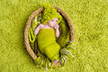 Newborn baby in woolen green hat inside basket Royalty Free Stock Photography