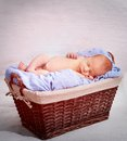 Newborn boy sleeping in a basket Stock Photos