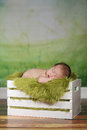 Newborn infant boy sleeping on a cute set adorable Royalty Free Stock Images