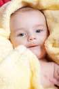 Newborn in soft yellow blanket Royalty Free Stock Image