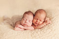 Newborn twins sleeping on the beige blanket together Royalty Free Stock Photos