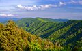 Newfound gap in the smoky mountains near gatlinburg tennessee Royalty Free Stock Photos