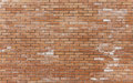 Newly constructed brickwall Royalty Free Stock Photo