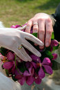 Newly married couple holding hands Royalty Free Stock Photo