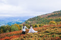 Newly married couple posing in the mountains Royalty Free Stock Photo