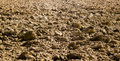Newly Ploughed Field. Autumn background. Royalty Free Stock Photo