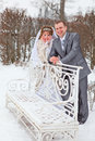 Newly wed couple in winter park Stock Images