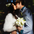 The newly-weds kisses in the sunshine Royalty Free Stock Photo