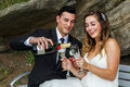 Newlyweds with champagne on a park bench a bottle of toasting Stock Images