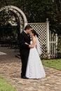 Newlyweds embracing Stock Image