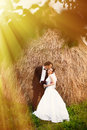 Newlyweds in garden sharing kiss sunlit after wedding ceremony Stock Images