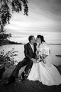 Newlyweds kissing portrait in monochromatic outdoor autumn scenery Stock Photography