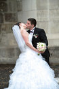 Newlyweds kissing Royalty Free Stock Photo