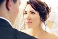 Newlyweds look at each other Royalty Free Stock Photography