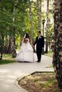 Newlyweds walking in the park Stock Images