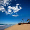Newport beach in california with palm trees along the shore Stock Images