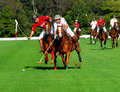 Newport Polo Club v. Tiverton Polo Club Royalty Free Stock Photos