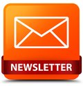 Newsletter orange square button red ribbon in middle Royalty Free Stock Photo