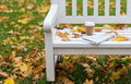 Newspaper and coffee cup on bench in autumn park Royalty Free Stock Photo