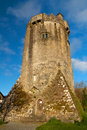 Newtown Castle at sunny day, Ireland Royalty Free Stock Images