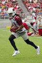 Nfl arizona cardinals football team training camp wide receiver larry fitzgerald holds first session at university of phoenix Royalty Free Stock Images