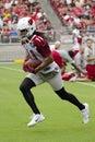 NFL Arizona Cardinals football team training camp Royalty Free Stock Photo