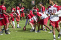NFL Arizona Cardinals training camp Stock Photo