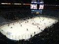 NHL Hockey Royalty Free Stock Photo