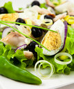 Niçoise salad Royalty Free Stock Images