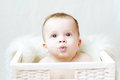 Nice baby in white basket age of months Stock Photography
