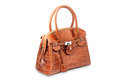 Nice brown crocodile leather woman handbag Royalty Free Stock Photo