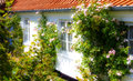 Nice garden a in skagen that is just idyllic Stock Image