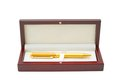 Nice golden pen in box Royalty Free Stock Photo